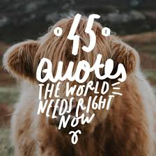 Until One Has Loved An Animal Quote by 45 Inspirational Quotes That The World Needs Right Now Bright Drops