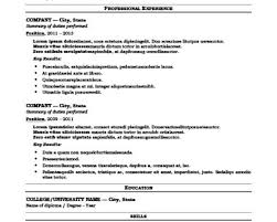 Technical Writing Resume Examples by Gis Resume Sample Ideas About Objective Examples For Resume