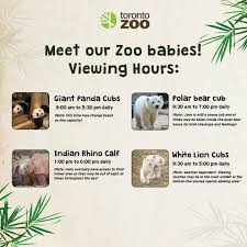 the toronto zoo on our zoo baby hours as of tomorrow