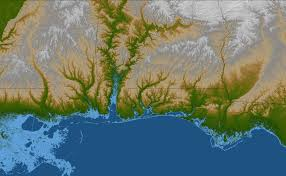Gulf Coast Of Florida Map by Gulf Coast Land Elevation Image Of The Day