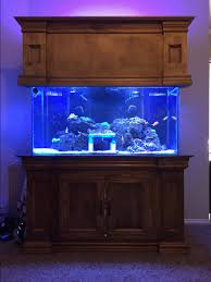 t5 lighting fixtures for aquariums help with distance for t5 u0027s and how many for a 24