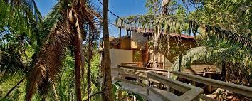 belize jungle lodge accommodations belize tree houses