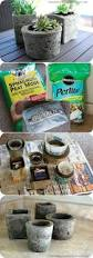 best 20 cement pots ideas on pinterest concrete pots diy