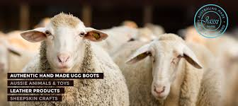 ugg boots australian made and owned made australian sheepskin ugg boots buy australian made ugg