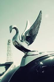 car automotive automotive decor emblem car