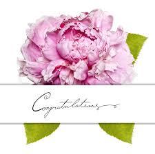 Peony Flowers Congratulation Card With Peony Flower Stock Photo Colourbox