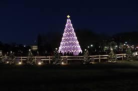 File Beautiful Christmas Tree Jpg Wikimedia Commons