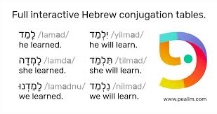 verb pattern hesitate constructor hebrew conjugation tables