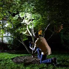 How To Choose Landscape Lighting Choose Landscape Lights Delightful Installing Outdoor Lighting