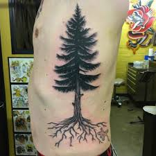 100 pine tree tattoos amazing watercolor pine tree tattoo