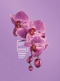 pantone color of the year for radiant orchid idolza