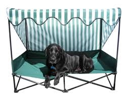 Elevated Dog Beds For Large Dogs Portable Dog Beds The Portable Pet Bed Hammacher Schlemmer Camp
