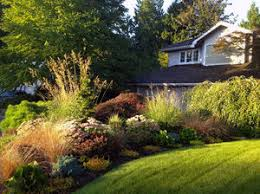 for a garden that flourishes be your own best editor the