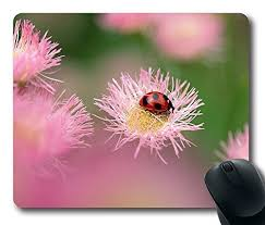 Ladybug Desk Accessories Ladybug Mouse Pad Flower Need 2 Buy It