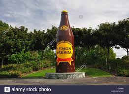 giant drink giant u0027lemon u0026 paeroa u0027 soda bottle paeroa waikato region north