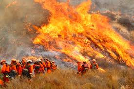 Wildfire Shot Drink by Zinke Directs More Aggressive Approach To Prevent Wildfires U2013 The
