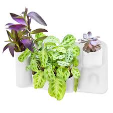 wall mounted planter self watering vertical wall mounted planter flower pot one planter
