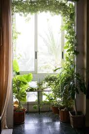 Interior Plant Wall 31 Best Green Wall Plant Paintings Images On Pinterest Plant