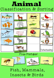 Best ideas about Preschool Worksheets on Pinterest   Preschool     Little Learning Lane   Great Printable Critical Thinking Worksheets for Kids