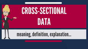what is cross sectional data what does cross sectional data