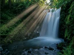 Oregon waterfalls images 10 waterfalls in oregon that 39 ll get you really wet jpg
