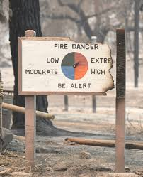 Wild Fire Danger by What Do You Think 102 Million Dead Trees Mean For Wildfire Danger