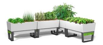 self watering pots introducing innovative and low maintenance