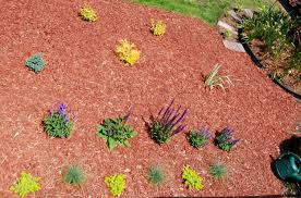 colorful flower gardens case study planting flower beds