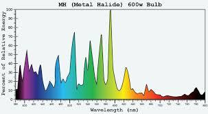 Hps Lights Hps Vs Metal Halide Bulbs The Best Grow Light Kits