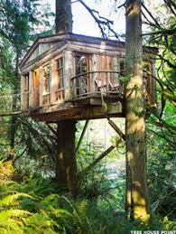 Cool Tree Houses The Seattle U0027tree House Master U0027 Who Can Show You How To Build The