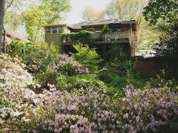 hillside landscaping ideas hgtv