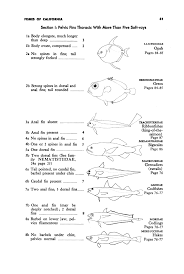 Leaf Dichotomous Key Worksheet Guide To The Coastal Marine Fishes Of California