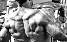 Close Grip Bench Bodybuilding Building A Big Freaky Back T Nation