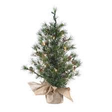24 inch miniature pre lit silver tip pine tree kurt s