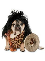 Halloween Costumes For Dogs Halloween Pet Costumes For Dogs