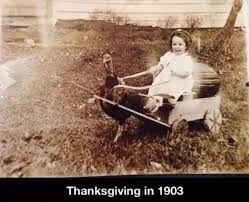 Thanksgiving Day Memes - thanksgiving memes and fun pictures thechive