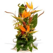 flowers to mumbai s day flowers delivery in mumbai send
