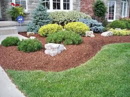 Garden Shrubs Ideas Garden Shrubs Ideas