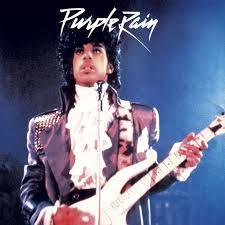 purple photo album purple rhythm