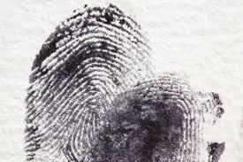 free images fur black security ink criminal art sketch