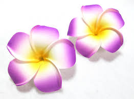 plumeria flower plumeria flower hair set of 2