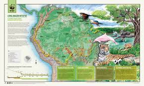Map Of The Amazon River The Living Amazon Initiative Visual Ly