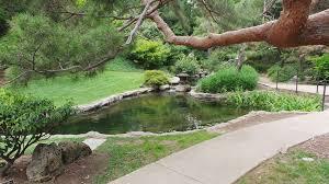 Huntington Botanical Gardens Pasadena by The Huntington Library Art Collections And Botanical Gardens In