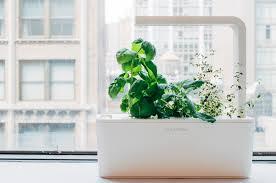 Click And Grow Refills Click U0026 Grow Smart Herb Garden Digital Home