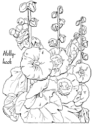 coloring page hollyhocks lovely the graphics fairy