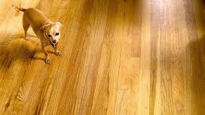soundproof your floors bob vila