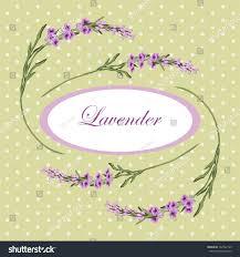 vintage floral frame lavender provence style stock vector