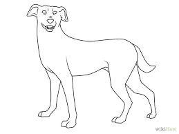 drawing of a dog cliparts co