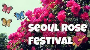 Discovering Korea A Short Stroll Through Flower Tunnel Youtube