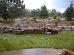 How Much To Landscape A Backyard by David Hart Gardenhart Landscaping And Design Tips